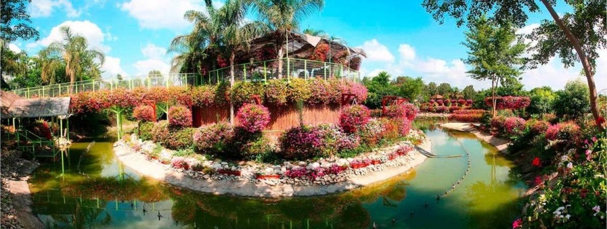Экскурсии в Парк Утопия парк орхидей в Израиле