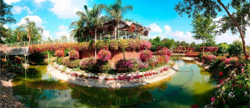 Экскурсии в Парк Утопия|парк орхидей в Израиле