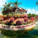 День отдыха и расслабления — парк орхидей Утопия, парк роз Ротшильда и музей Ралли