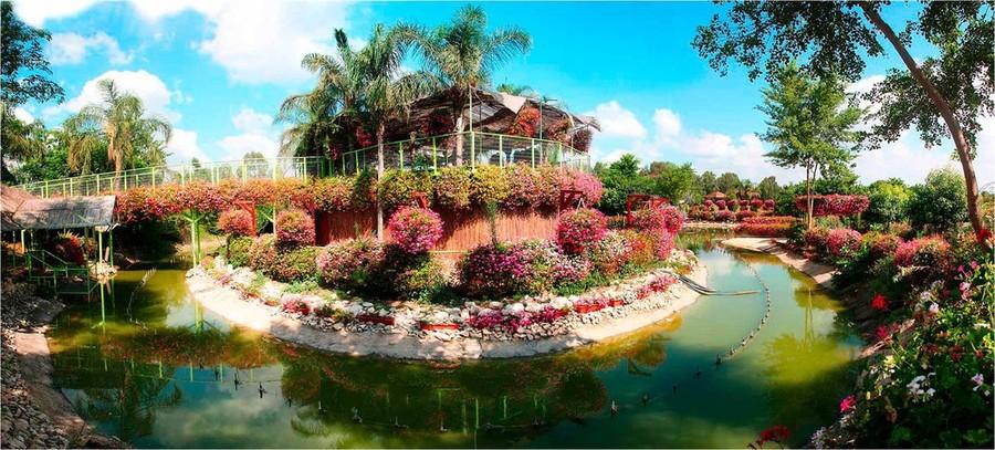 Экскурсии в парк орхидей Утопия,роз Ротшильда,музей Ралли
